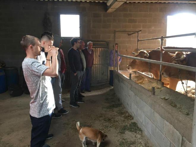 visita-chefs-vacas-2